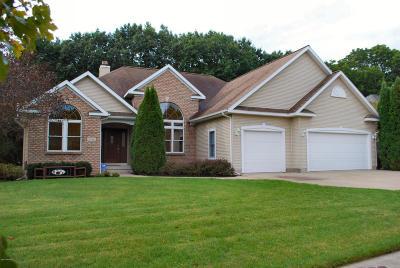 Rockford Single Family Home For Sale: 3740 Windwood Drive NE