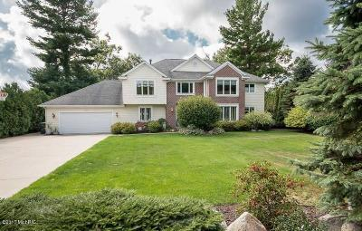 Muskegon County, Oceana County, Ottawa County Single Family Home For Sale: 1695 Rood Point Road