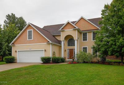 Kalamazoo Single Family Home For Sale: 7647 Manitou Street