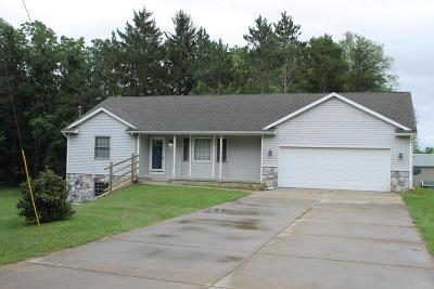 Allegan Single Family Home For Sale: 3036 127th Avenue #1