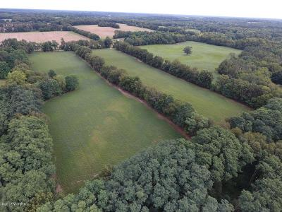Jackson County Residential Lots & Land For Sale: 9500 Town Road