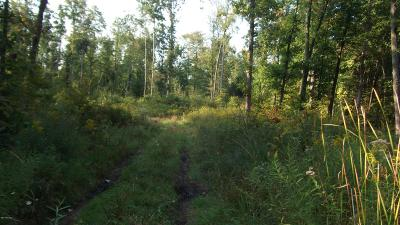 Grand Haven Residential Lots & Land For Sale: Johnson Street