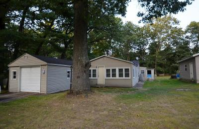 Newaygo Single Family Home For Sale: 8482 S Spruce Avenue