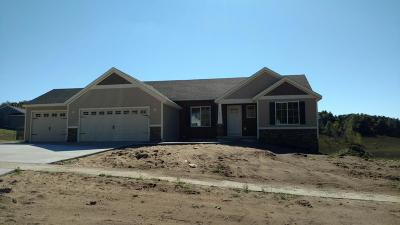 Sparta Single Family Home For Sale: Lot 16 Ridge Water Drive