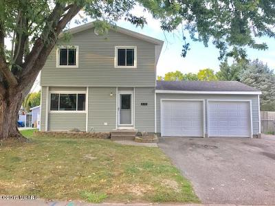 Middleville Single Family Home For Sale: 808 Greenwood Street