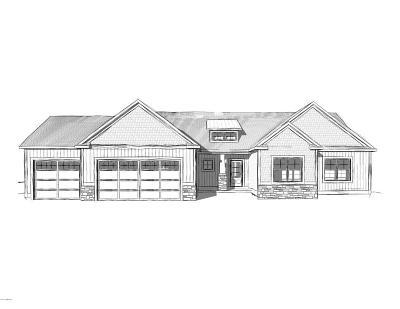 Zeeland Single Family Home For Sale: 9997 Switchgrass Lane #101