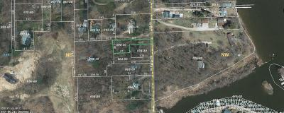 Saugatuck, Douglas Residential Lots & Land For Sale: 318 S Ferry Street