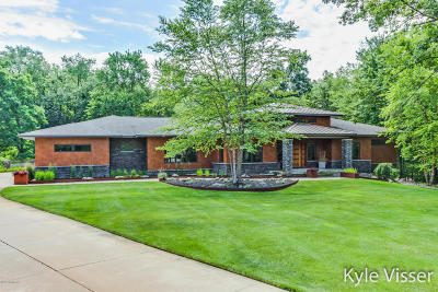 Ada Single Family Home For Sale: 1045 Skyevale Drive NE