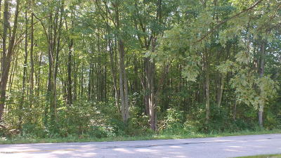 Holland, West Olive Residential Lots & Land For Sale: 143rd Avenue