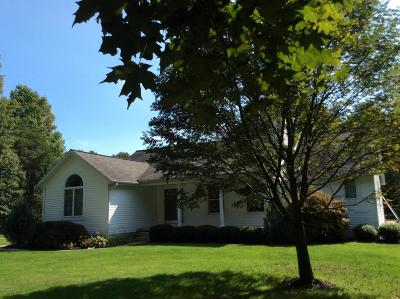 Grand Haven Single Family Home For Sale: 15400 Lincoln Street