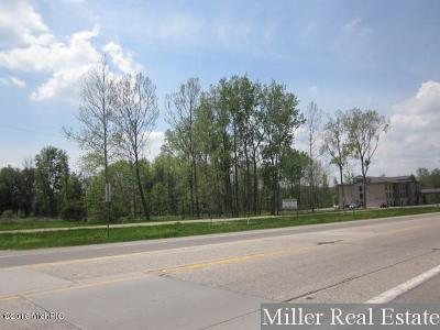 Clinton County, Gratiot County, Isabella County, Kent County, Mecosta County, Montcalm County, Muskegon County, Newaygo County, Oceana County, Ottawa County, Ionia County, Ingham County, Eaton County, Barry County, Allegan County Residential Lots & Land For Sale: 1025 M43 #B
