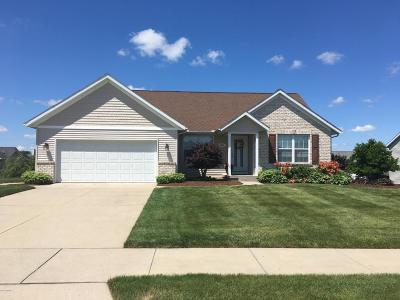 Single Family Home For Sale: 6967 Deer Cove Drive SE