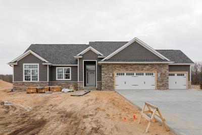 Kalamazoo County Single Family Home For Sale: 9413 W Pq Avenue