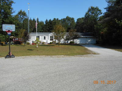 Newaygo County Single Family Home For Sale: 5115 Jack Pine Drive