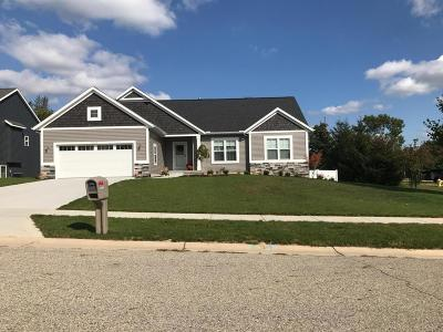 Wyoming Single Family Home For Sale: 5596 Mills Ridge Drive