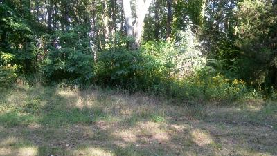 Residential Lots & Land For Sale: Parcel A 76th Street