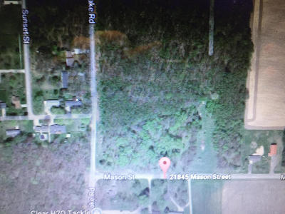 Edwardsburg Residential Lots & Land For Sale: 21845 Mason Street