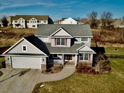 Grand Rapids Single Family Home For Sale: 1643 Bristol Ridge