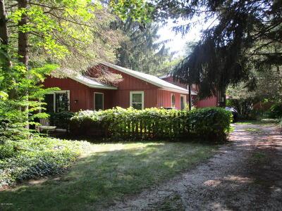 Saugatuck, Douglas Single Family Home For Sale: 145 Grant Street