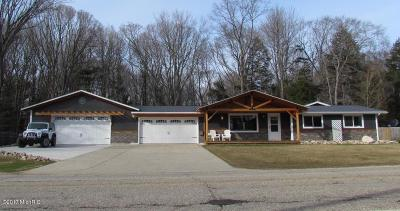 New Era Single Family Home For Sale: 7652 Stony Lake Road