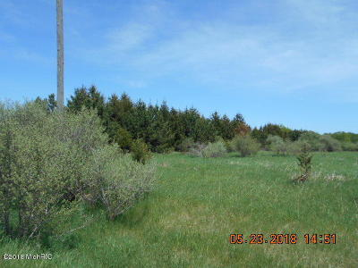 Scottville Residential Lots & Land For Sale: N Stiles Road