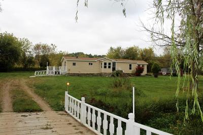 Allegan County Single Family Home For Sale: 379 144th