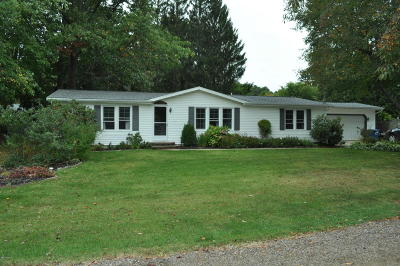Allegan Single Family Home For Sale: 1634 Richards Drive
