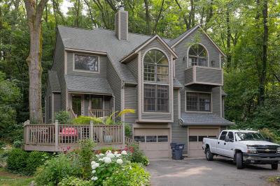 Kalamazoo Single Family Home For Sale: 9578 Amber Circle