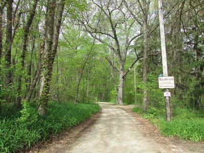 Bridgman Residential Lots & Land For Sale: Wildwood Drive