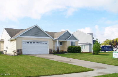 Single Family Home For Sale: 9584 Scotsmoor Court