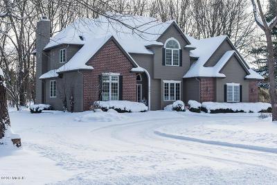 Kalamazoo Single Family Home For Sale: 5581 Bobwhite Avenue