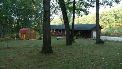 Single Family Home For Sale: 14189 6 1/2 Mile Road