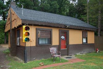 Newaygo Single Family Home For Sale: 5538 S Croton Hardy Drive