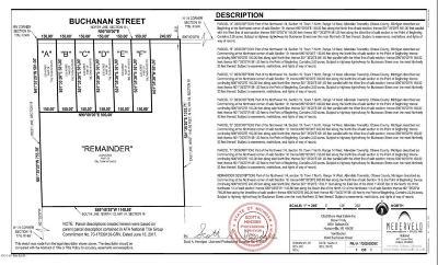 Allendale Residential Lots & Land For Sale: 9540 Buchanan Street #Lot F