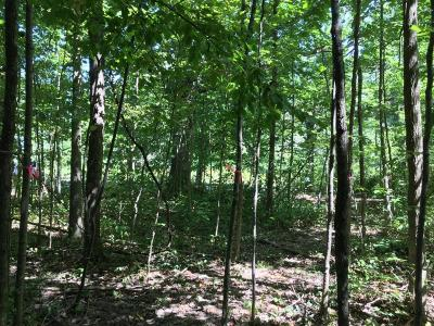 Berrien County, Branch County, Cass County, Calhoun County, Hillsdale County, Jackson County, Kalamazoo County, Van Buren County, St. Joseph County Residential Lots & Land For Sale: East Road