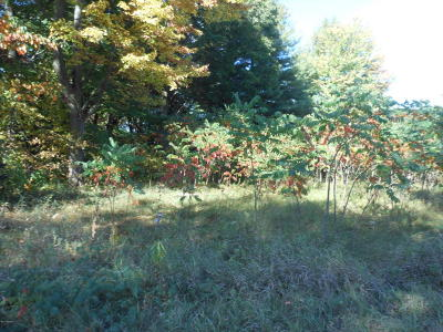 Holland, West Olive Residential Lots & Land For Sale: 4887 136th Avenue
