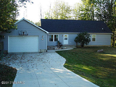 Allegan Single Family Home For Sale: 1808 Crystal Lane