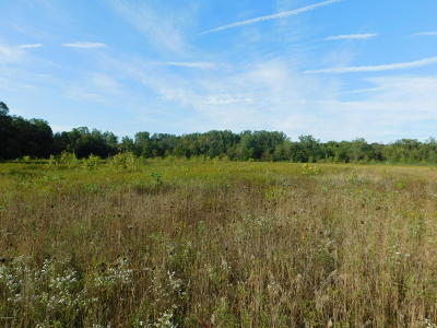 Niles Residential Lots & Land For Sale: V/L Turkey Trail