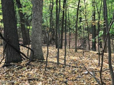 Residential Lots & Land For Sale: 5932 9 Mile Road NE
