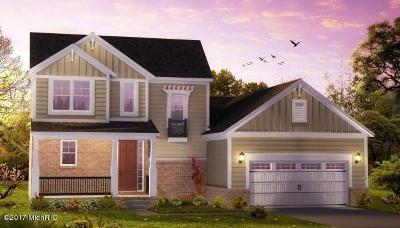 Hudsonville Single Family Home For Sale: 6534 Alward Drive
