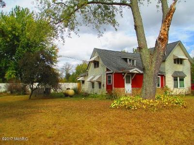 South Haven Single Family Home For Sale: 6445 102nd Avenue