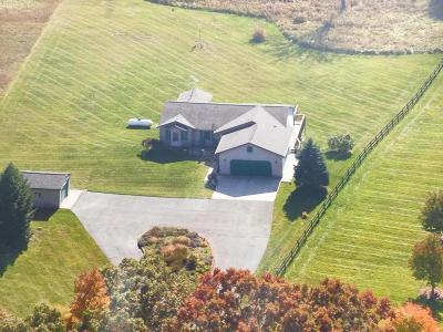 Rockford Single Family Home For Sale: 9780 6 Mile Road NE