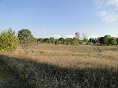 Belding Residential Lots & Land For Sale: 755 Merrick Street