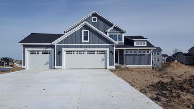 Hudsonville Single Family Home For Sale: 3383 Sagecrest Drive #35