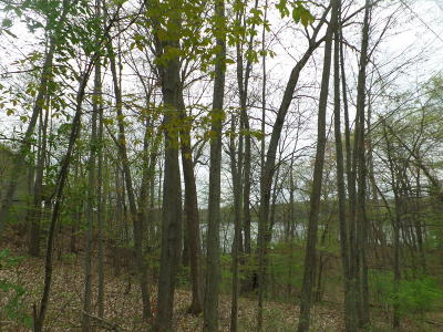 Jackson County Residential Lots & Land For Sale: Lot 320 East Shore Drive