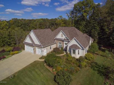 Plainwell Single Family Home For Sale: 185 Hestia Drive
