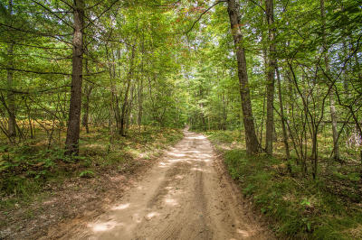 Newaygo County Residential Lots & Land For Sale: 00 Beech Avenue