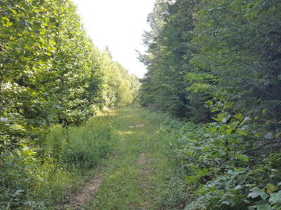 Holland, West Olive Residential Lots & Land For Sale: Vac/Land 64th Street
