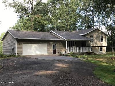 Whitehall Single Family Home For Sale: 9717 Automobile Road