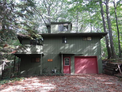 Allegan County Single Family Home For Sale: 2053 Lakeshore Drive